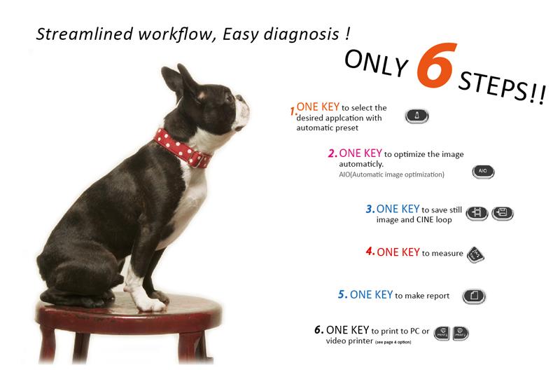 échographe vétérinaire portable