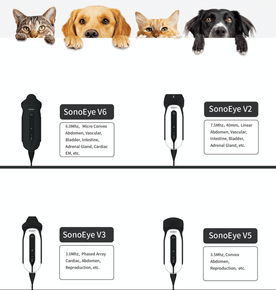 échographe vétérinaire ultraportable